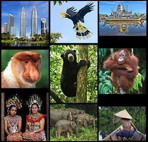 Borneo, Sabah, Sarawak & Brunei