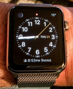 Apple Watch Stainless Steel with Milanese Loop on my wrist